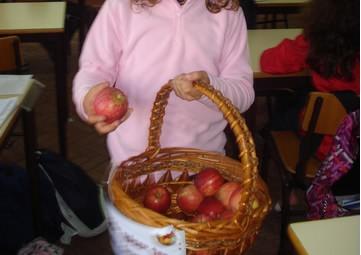 Distribuição de maçãs pelas turmas